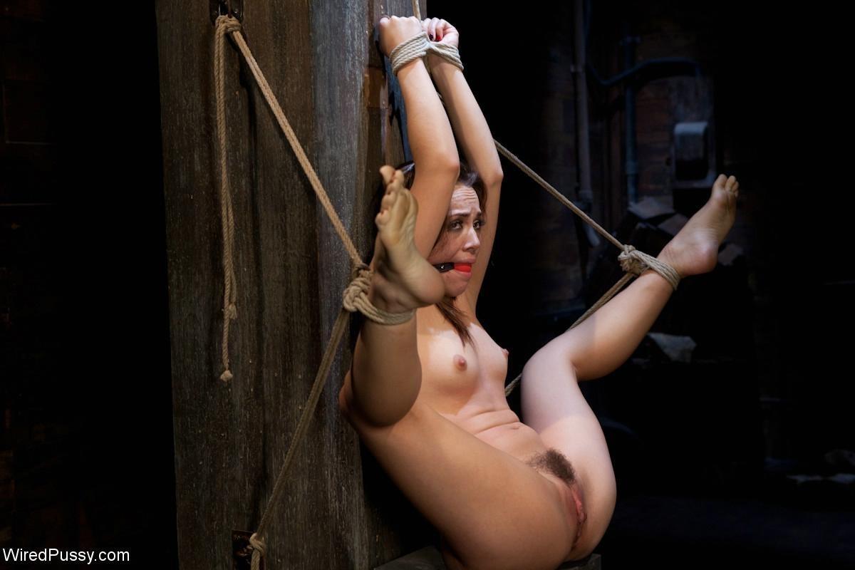 Kristina Rose, Gia Dimarco - Галерея 3435518