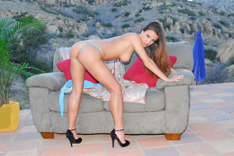 Andie Valentino - Галерея 2600718