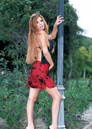 Alexis Amore - Галерея 23808