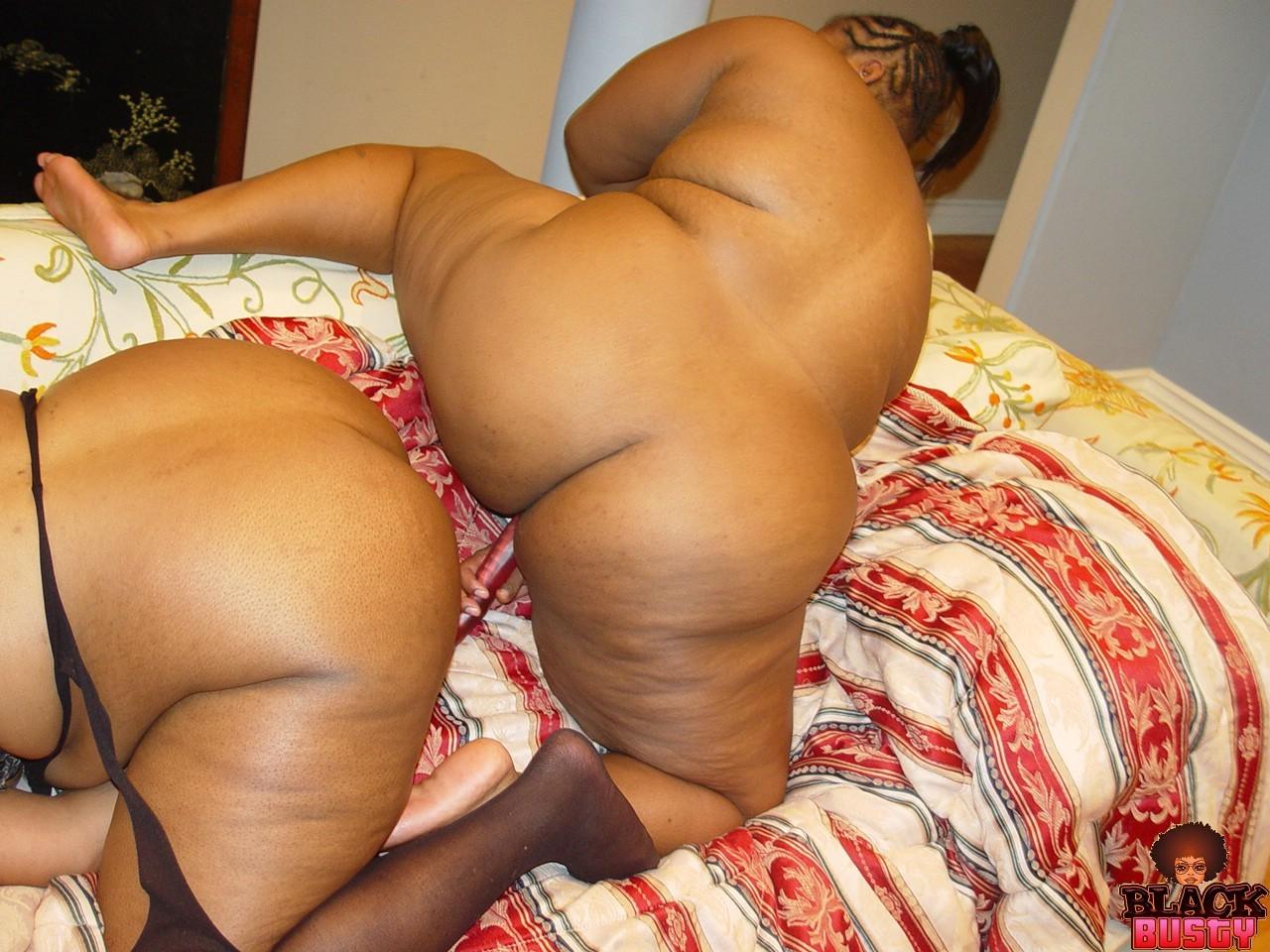 Ebony bbw lesbian hardcore