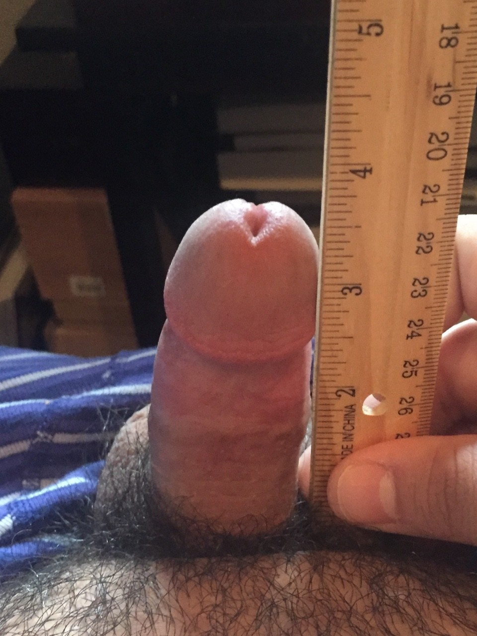 12 inches cock