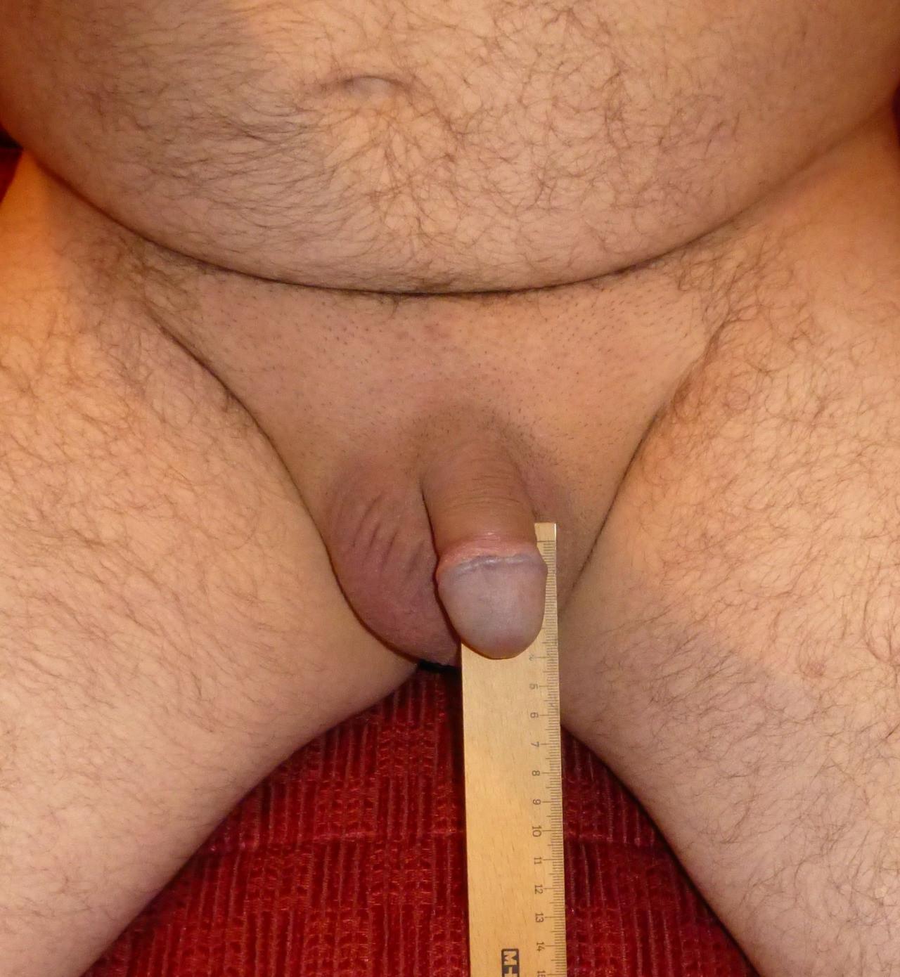 Tiny penis in panties