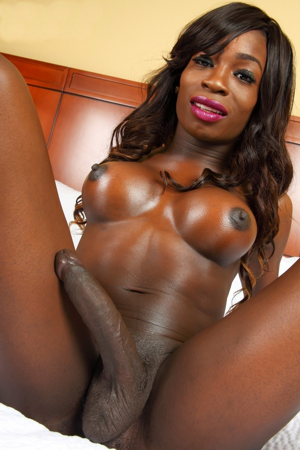 Black Tranny Bitch