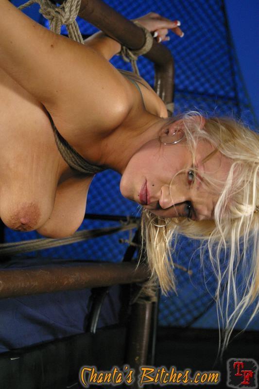 Блондинки - Галерея № 2998823