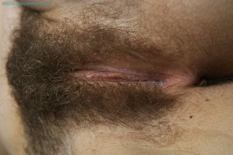 Волосатые - Галерея № 3549918