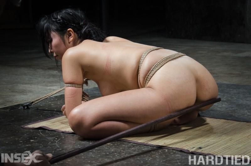 Jack Hammer, Marica Hase - Японское - Галерея № 3508051