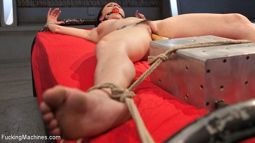 Veruca James - Секс машина - Галерея № 3488903