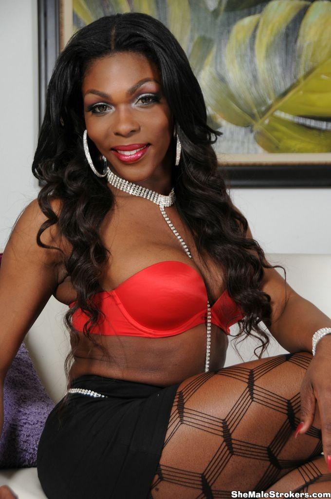 Транссексуал - Галерея № 3212370
