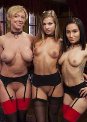 Darling, Sydney Cole, Gabriella Paltrova, Karlo Karrera - Секс игрушки - Галерея № 3457797
