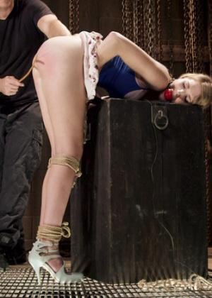 Ashley Lane - Секс игрушки - Галерея № 3441694