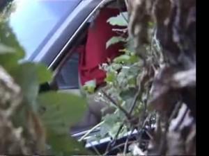 Подсмотрел из-за кустов как трахаются в машине