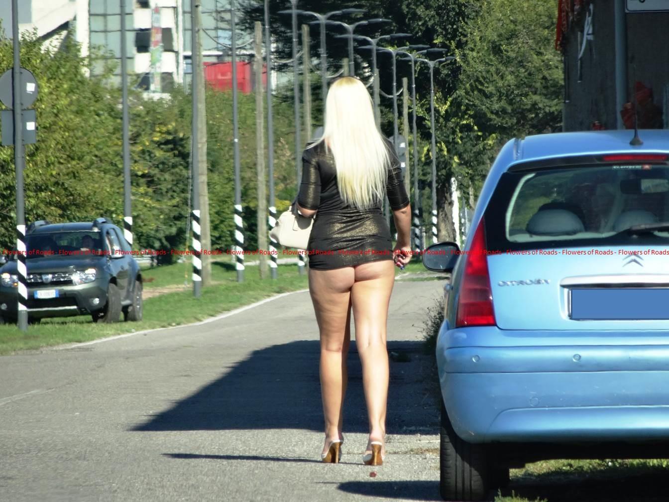 трасса проституток