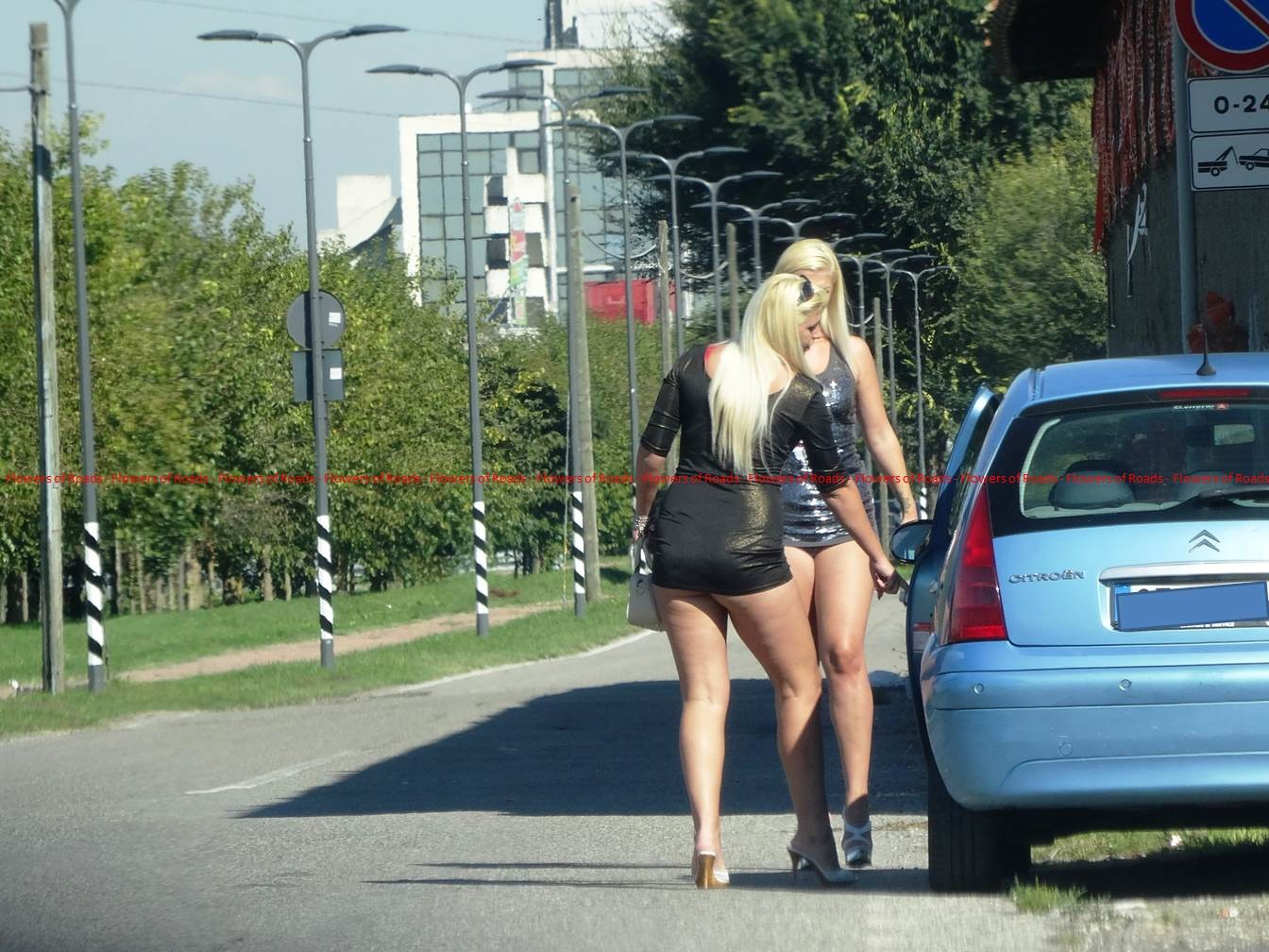 Сексуальная проститутка стоит на трассе