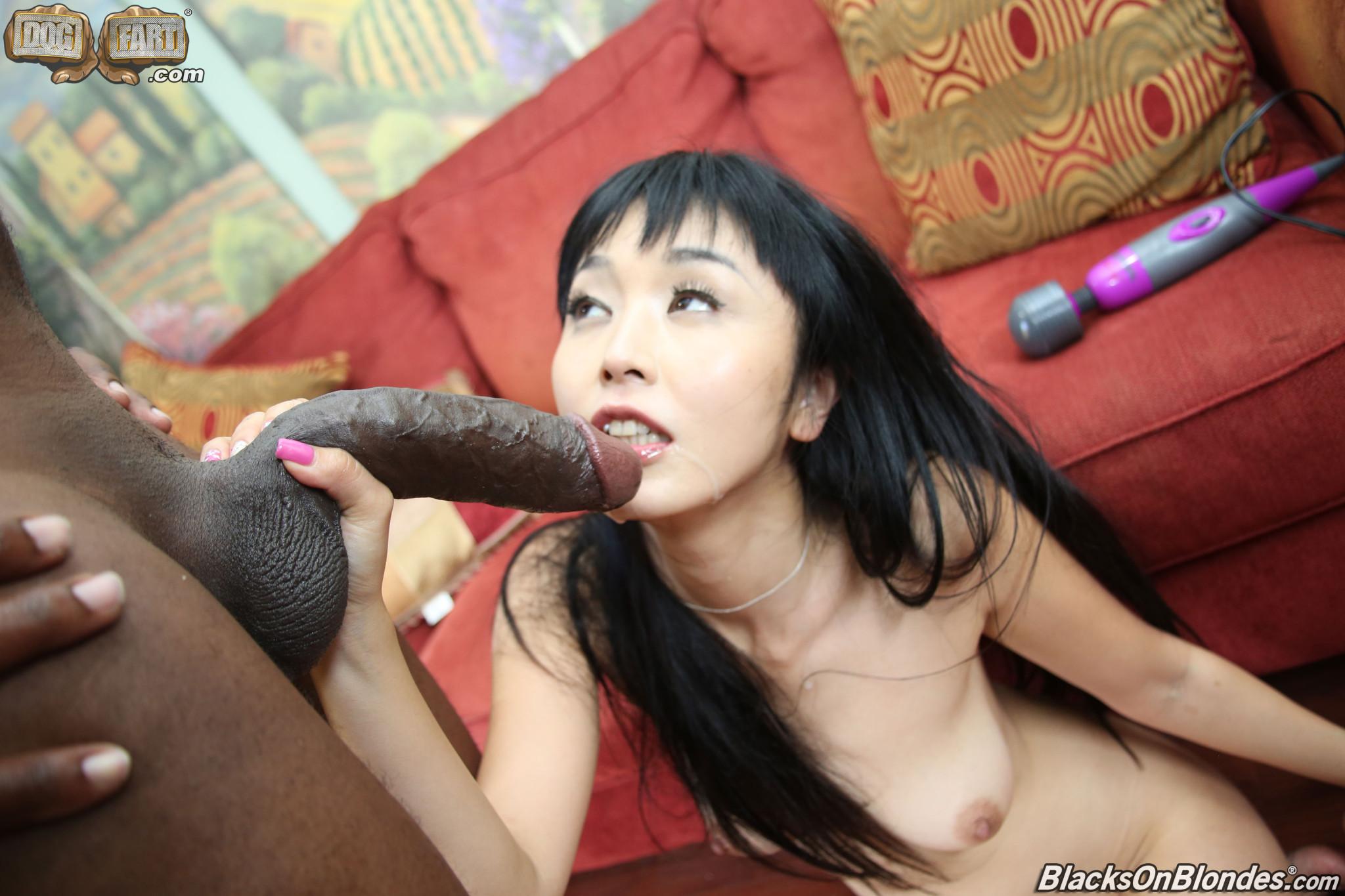 Marica Hase - Азиатки - Порно галерея № 3530279