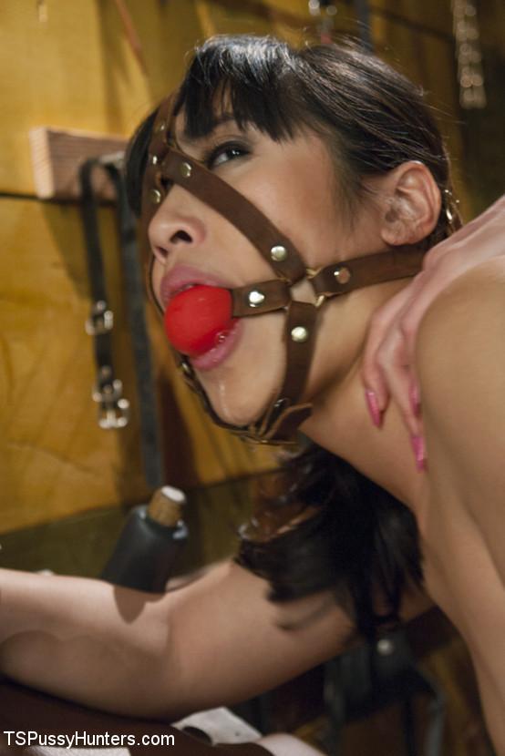 Mia Li, Venus Lux - В позе раком (доггистайл) - Галерея № 3411333