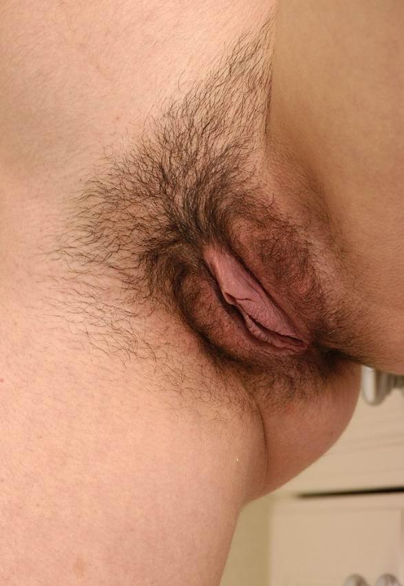 Волосатые - Порно галерея № 3407047