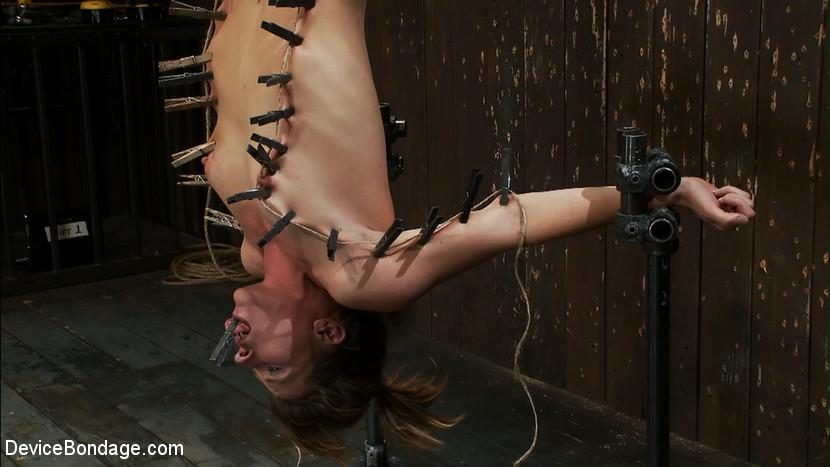 Isis Love, Ariel X, Madison Young - Секс машина - Галерея № 2808794