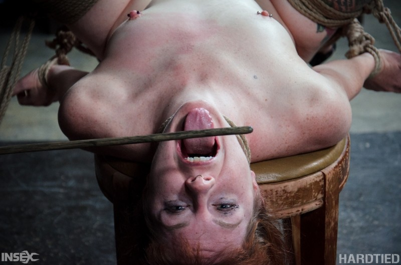 Rain Degrey, Jack Hammer, Barbary Rose - Рыжая - Порно галерея № 3537156