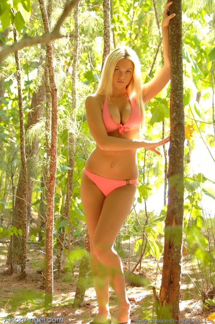 Соло на берегу блондинки Alison Angel